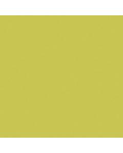 Formica Prima Gloss Wasabi Splashback